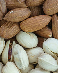 VIII International Symposium on Almonds and Pistachios