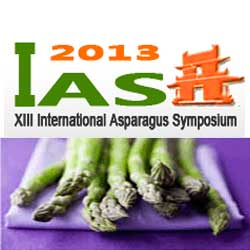 XIII International Asparagus Symposium