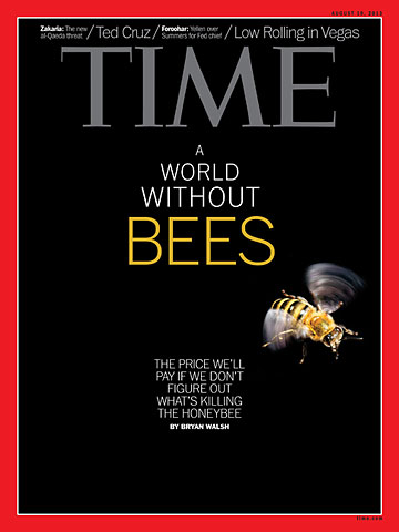 A World Without Bees - Time Magazine