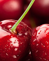 Save the date: IX International Cherry Symposium