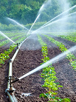 IHC2018 Water and Nutrients Symposium update