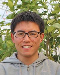 Post-zygotic arrest of embryo development induces seedless fruits in kabosu (Citrus sphaerocarpa hort. ex Tanaka)