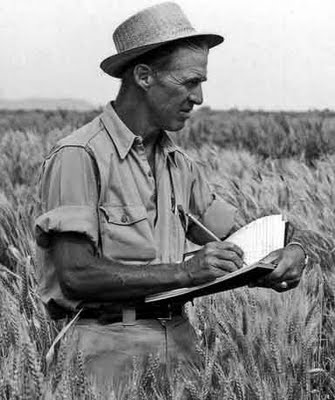 The Norman Borlaug Award for Field Research and Application