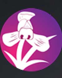 III International Orchid Symposium