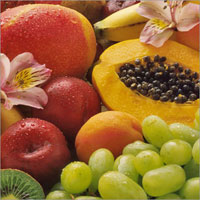 Newsletter N° 9: July 2013 - Section on Tropical and Subtropical Fruits