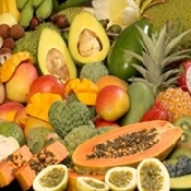 Newsletter N° 11: July 2014 - Section on Tropical and Subtropical Fruits