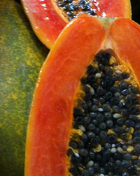 Newsletter N° 17: July 2017 - Section on Tropical and Subtropical Fruits