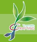 ISVG2014 - Vegetable Grafting